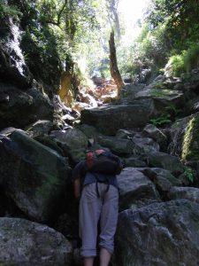 Klettern ist angesagt