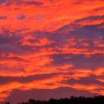 So feiert man Sylvester in Neuseeland - Feuerwerk was sich nicht in Rauch aufloest aber dafuer in Sternen