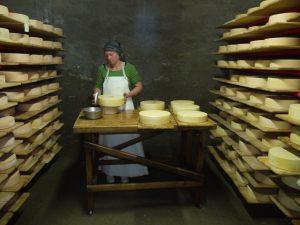 Luci beim Käse schmieren